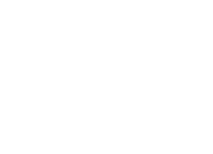 Higgs and the Bosons